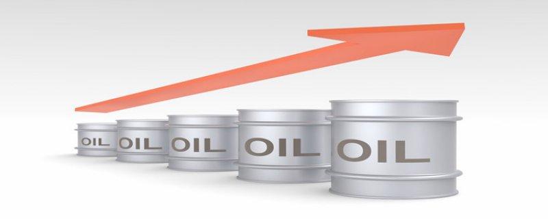 尼日利亚政府勒令石油国务部长本周内解决油荒问题
